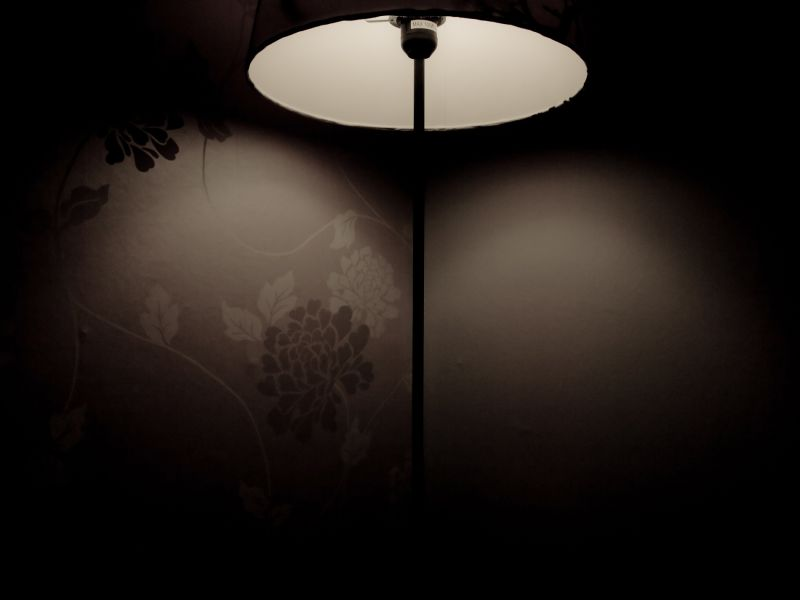 Attracted by Lamplight #3