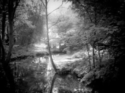 By Dark Water  (image 1 of 5)