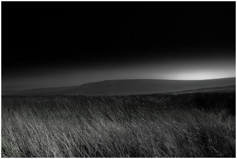 Saddleworth Moor #1