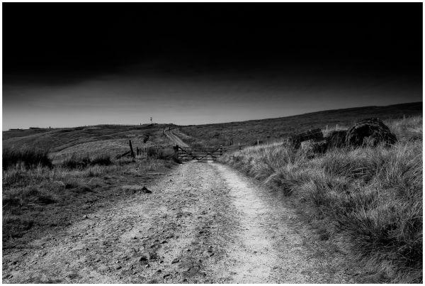 Saddleworth Moor #2