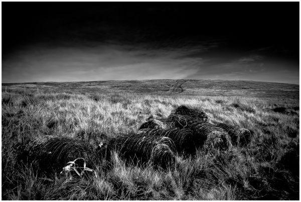 Saddleworth Moor #3