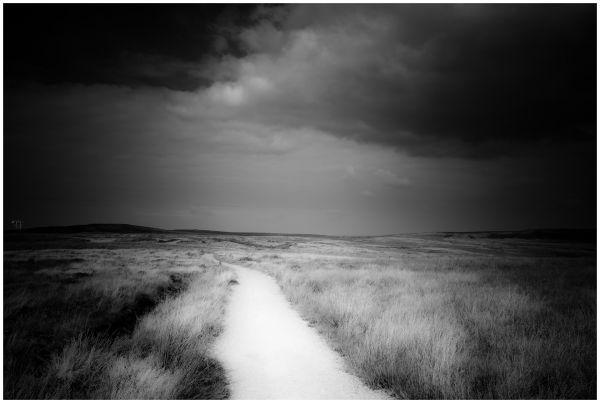 Saddleworth Moor #5