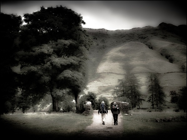 Scenes from a walk in Great Langdale #1