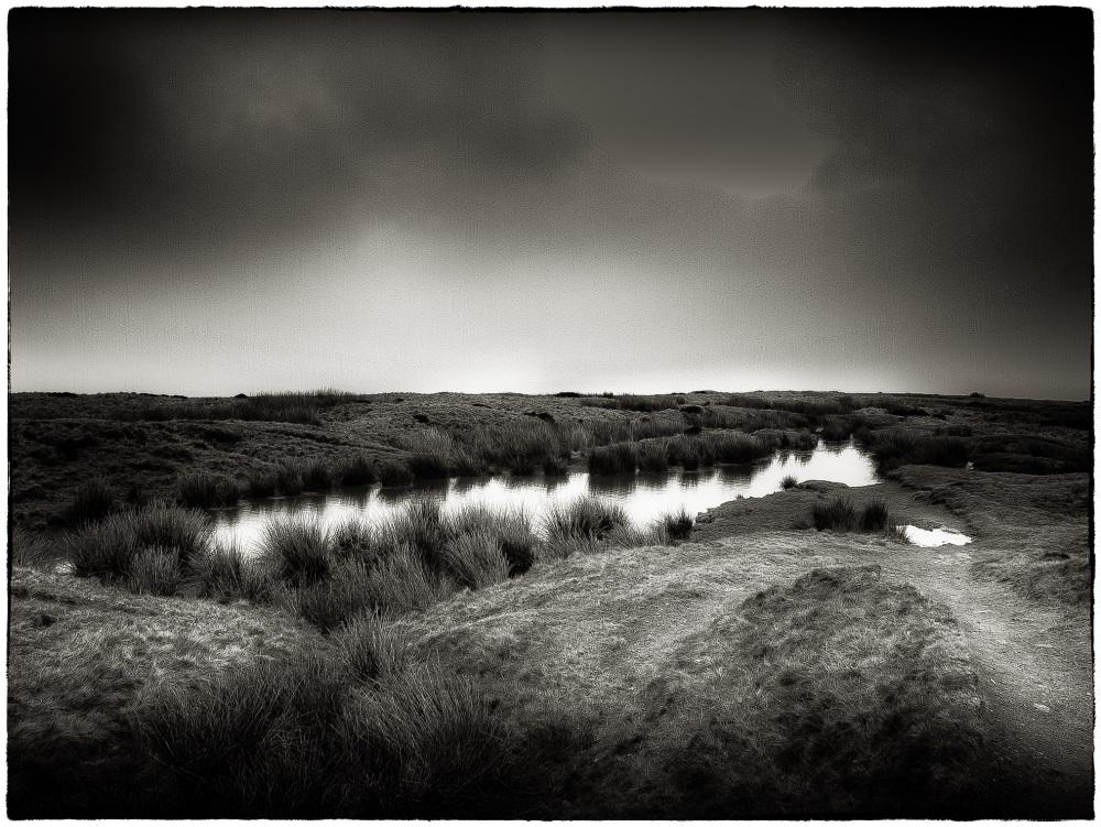 Baildon Moor..