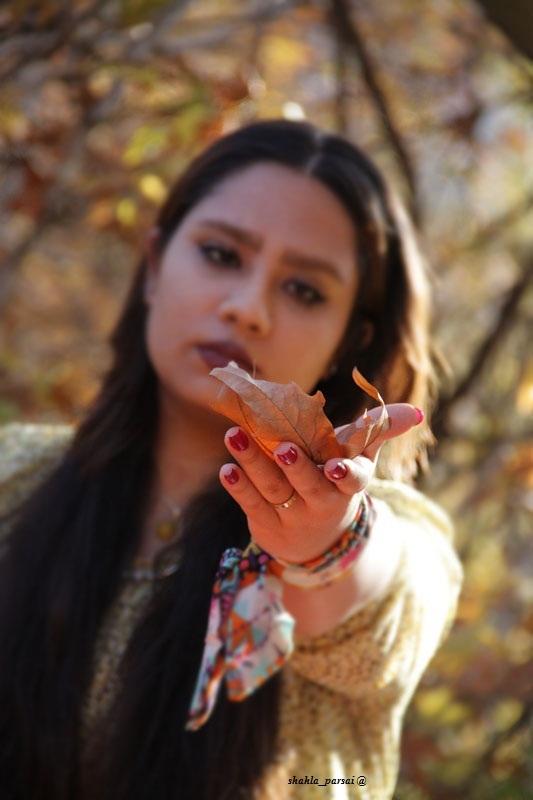 - پاییز - 3