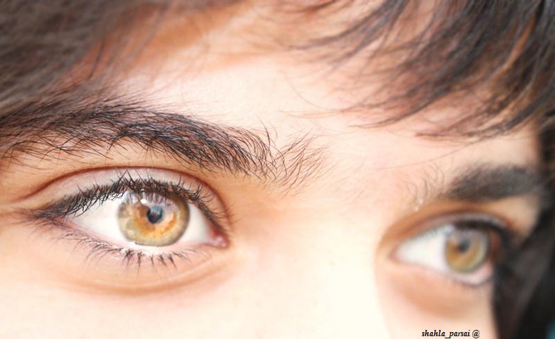 ... چشم هایش ...