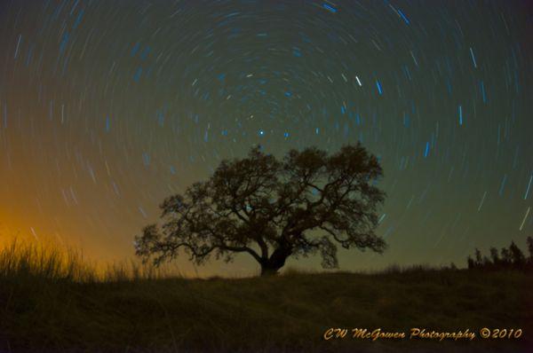 Oak Pinwheel