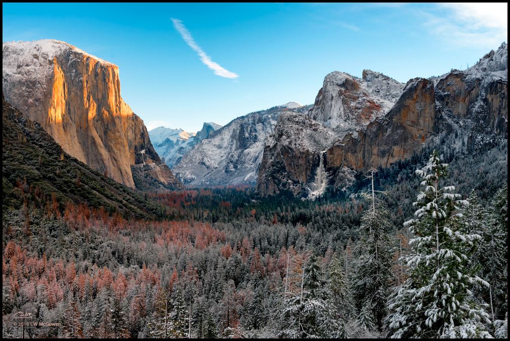 White Christmas in Yosemite