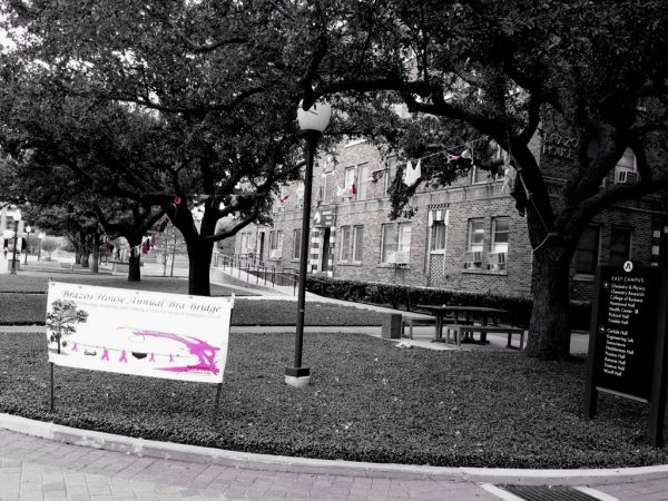 UTA Breast Cancer Awareness