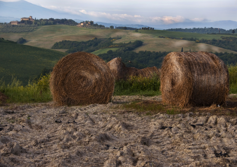 Hay bales in Tuscany