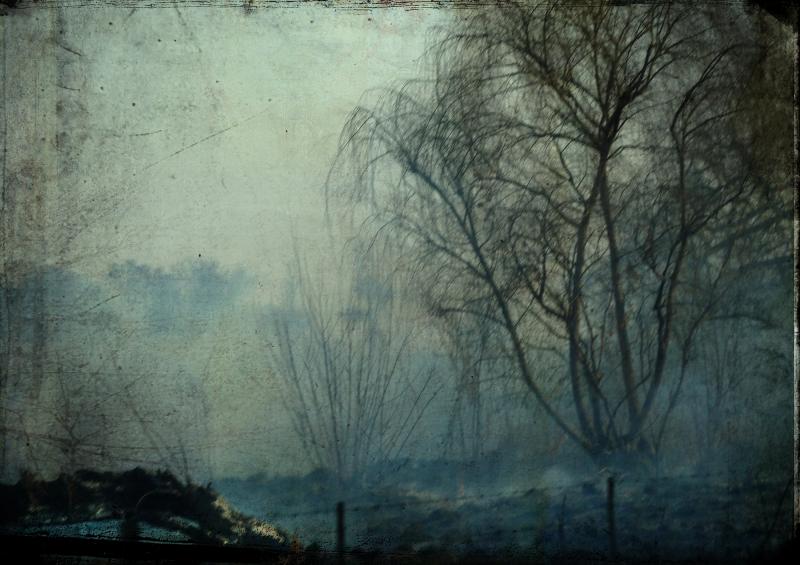Smoke in the fields