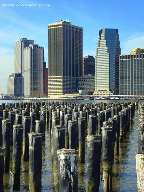 View from Brooklyn Waterfront