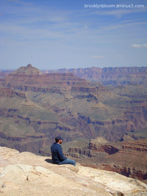 contemplation in grand canyon