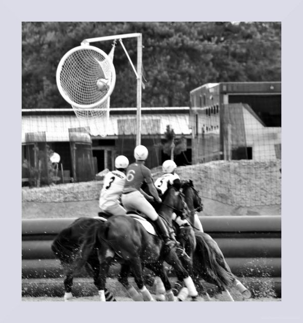 horse-ball  IV