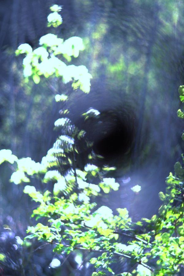 le trou noir