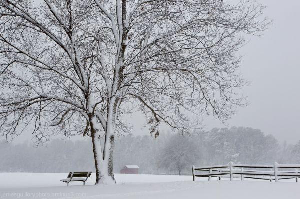 winter morning snow lake benson north carolina