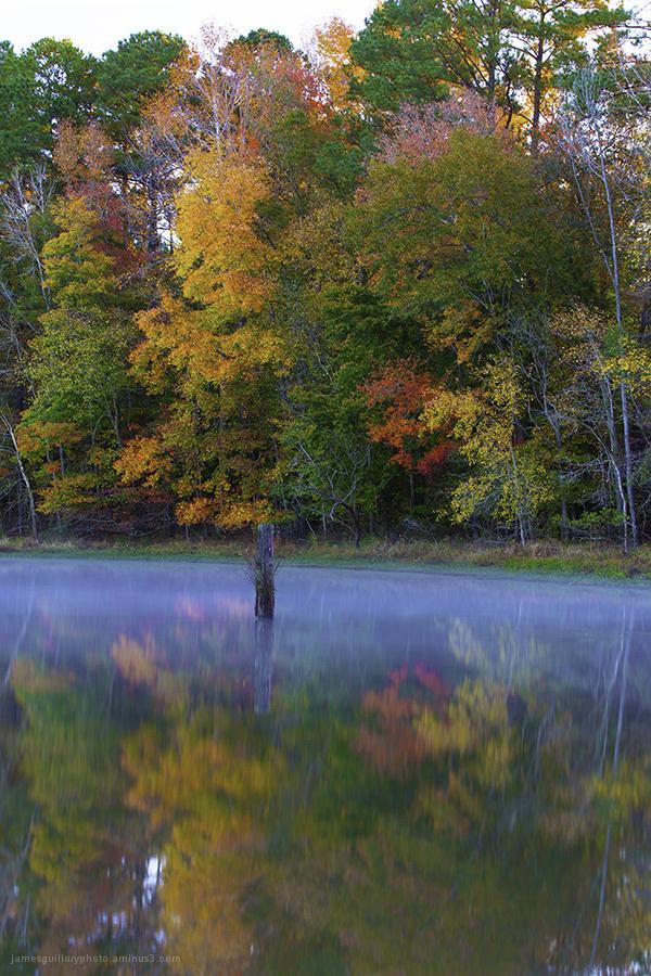 fall color, reflections, garner, north carolina