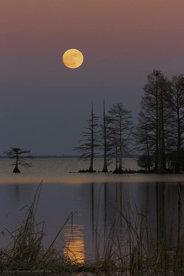 full moon, lake mattamuskeet, north carolina