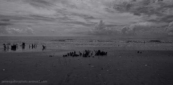 botany bay low tide, edisto island, south carolina