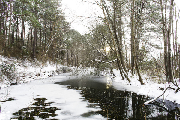 lake benson park, winter snow, garner, nc