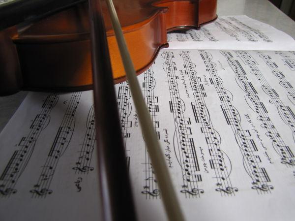 my violon