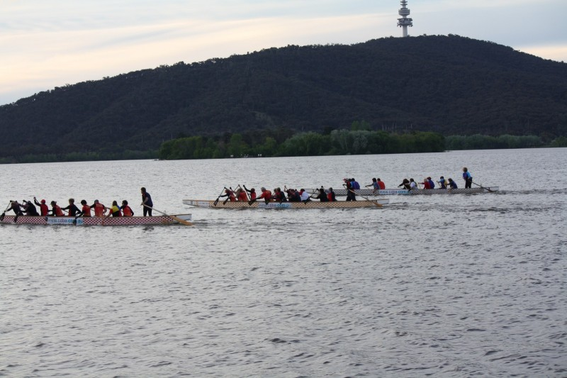 boat race at sunset