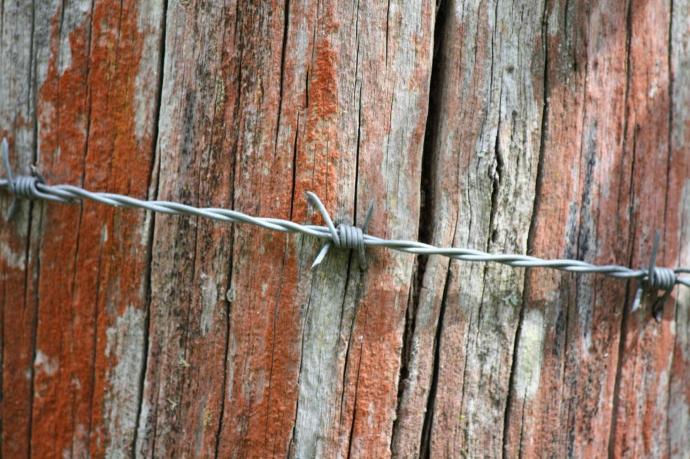 post and barbed wire