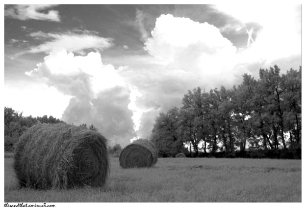 Hay bales in Provence.