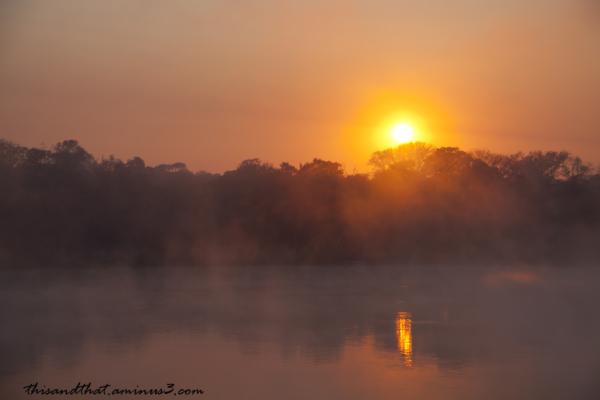 Sunrise over the Okavango River