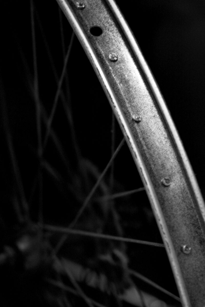 rim bycycle wheel