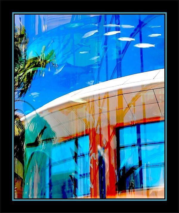 Aquarium Montpellier