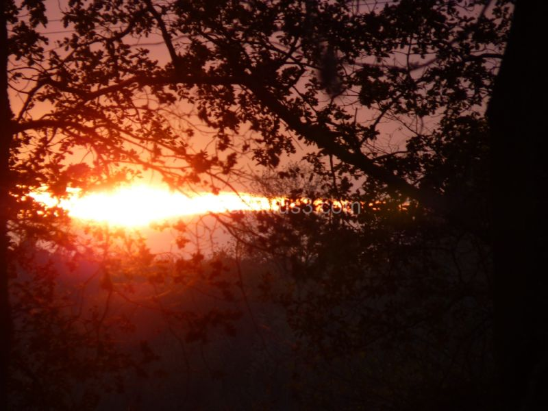 Sunset in Sologne (2)