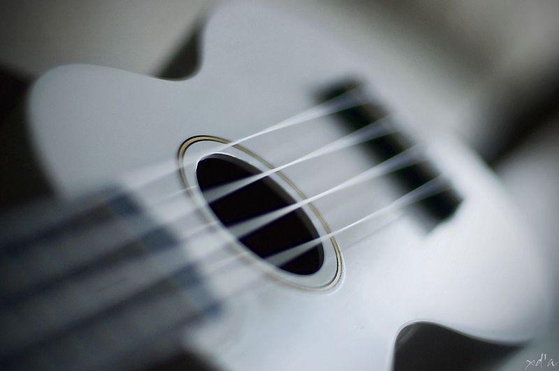 La musique adoucit les moeurs