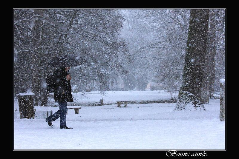 un parapluie sous la neige