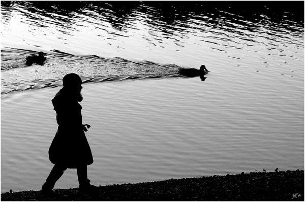 un enfant semble suivre des canards