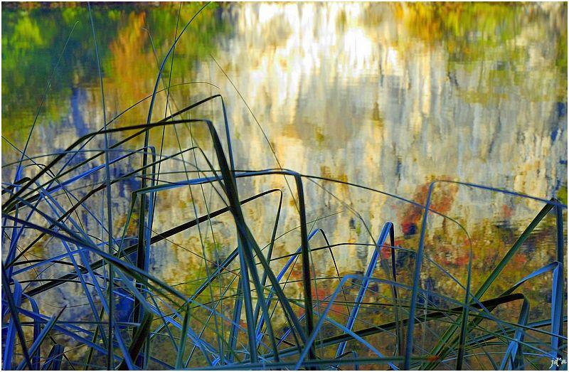 Des reflets dans un lac de Plitvice