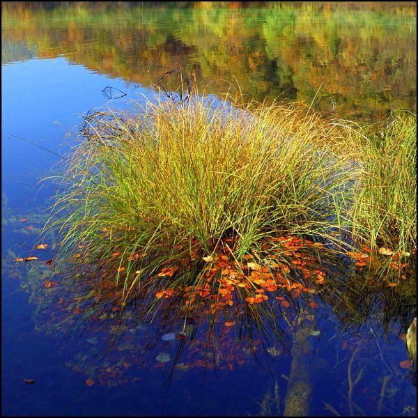 Paysage d'automne sur le lac