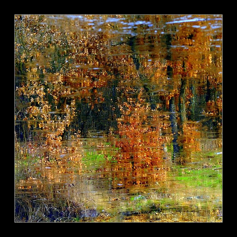 Reflets renversés d'automne.