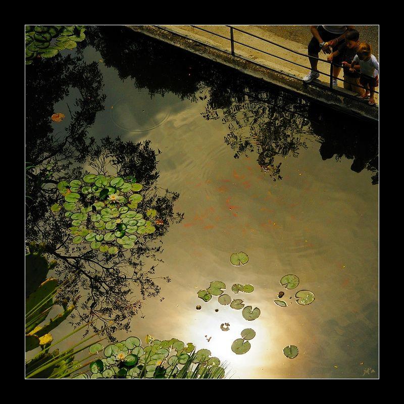 Le reflet du soleil dans un bassin