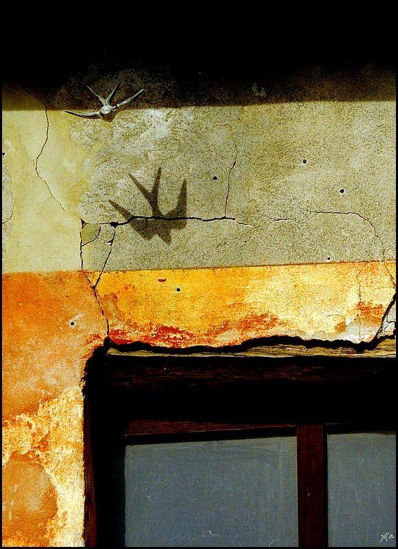 L'ombre d'une hirondelle en terre cuite
