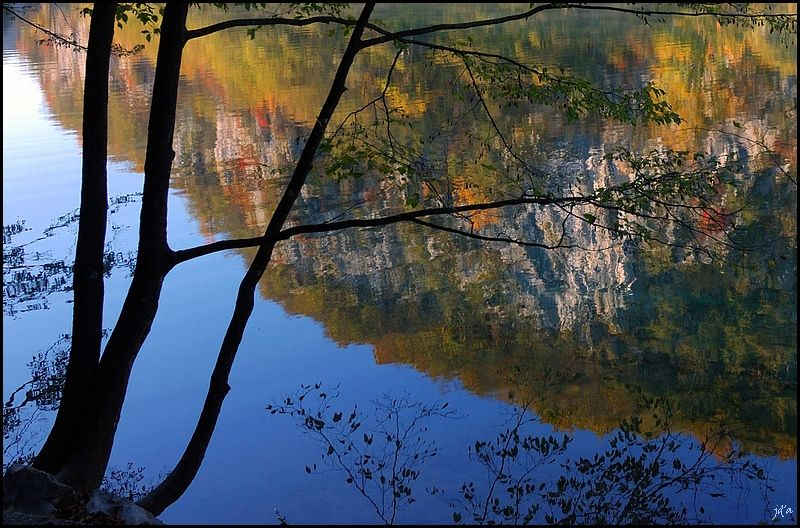 Les reflets de la nature à l'automne