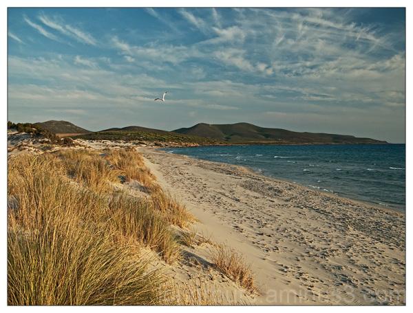 Beach of Porto Pino, Sardinia