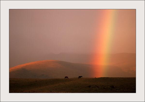 Rainbow over Cotopaxi Park