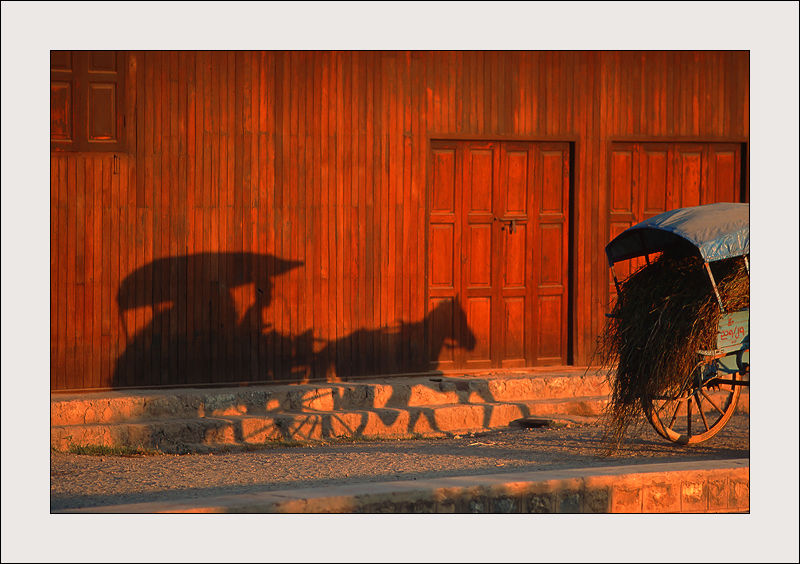 Shadow of a horse in a wall in Burma at sunset