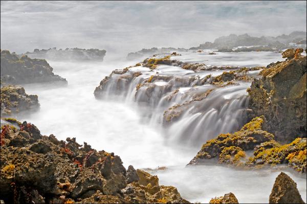 Waves on Marie-Galante coast