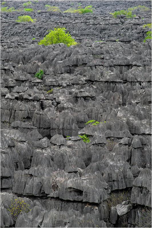 Grey Tsingy ia Ankarana Park, Madagascar
