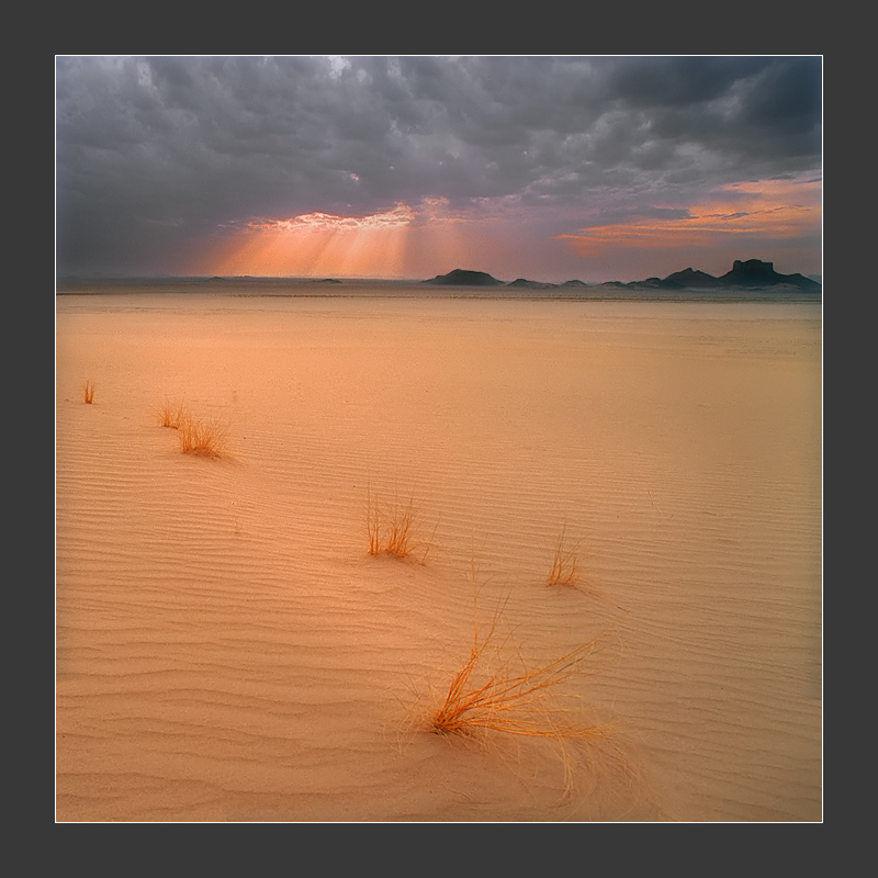 Desert around Afara, Algeria