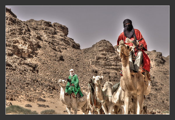 Touareg and camels in the desert of Algeria