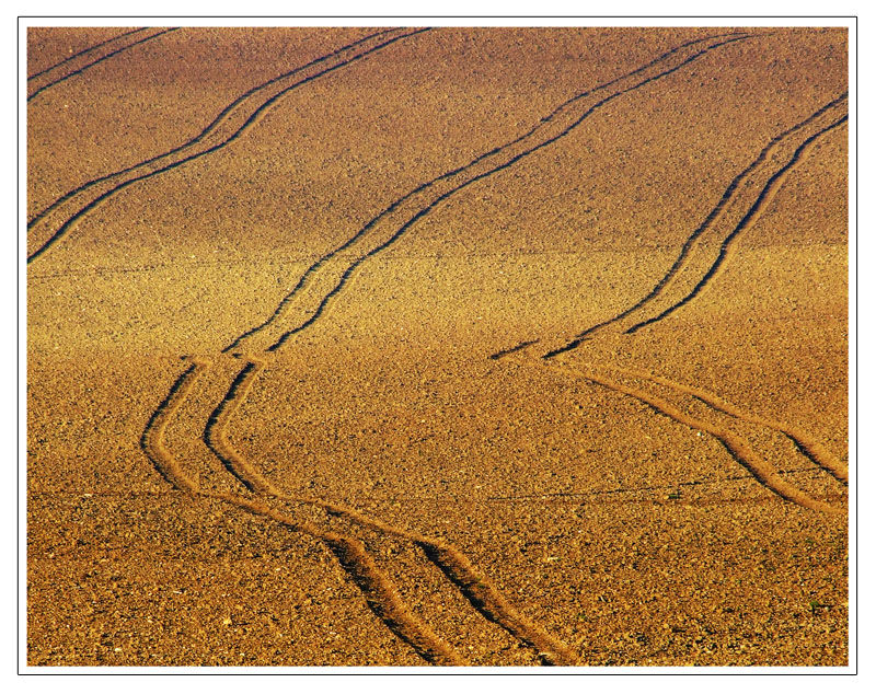 Tracks on the land