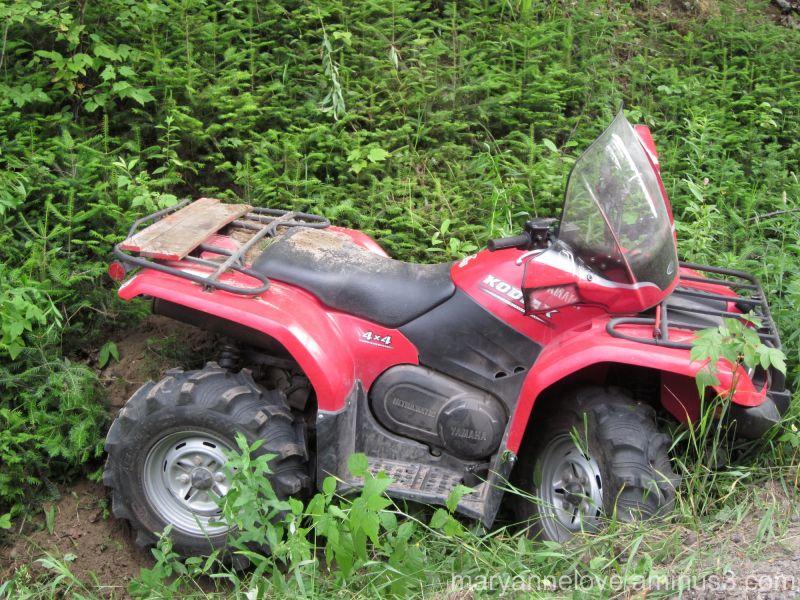 Dumbass ATV Accident